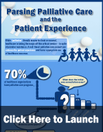 HINfographic: Parsing Palliative Care and the Patient Experience