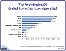 What Are the Leading ACO Quality/Efficiency/SatisfactionMeasure Sets?